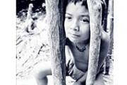 Serah Jajah dan Perlawanan Yang Tersisa Etmografi Orang Rimba di Jambi